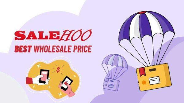 salehoo dropship review wholesale price